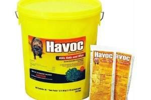 Qu veneno es bueno para matar ratones efectivos - Productos para matar ratones ...
